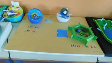 célula1 (3)
